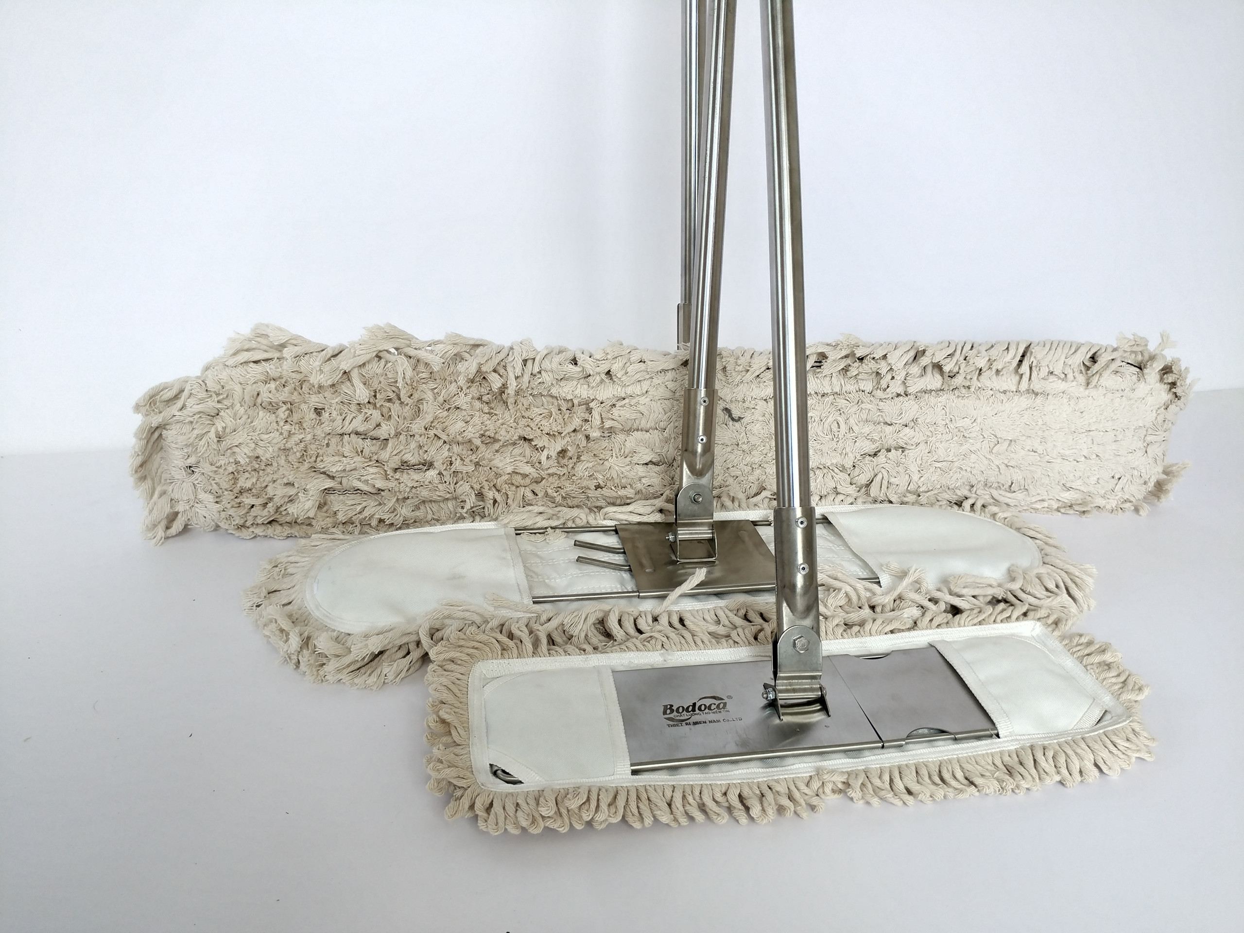 Cây lau bụi cottong giá rẻ 45cm